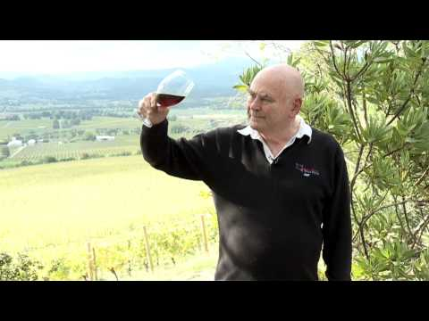 James Halliday wine tasting tip - White wine bouquet