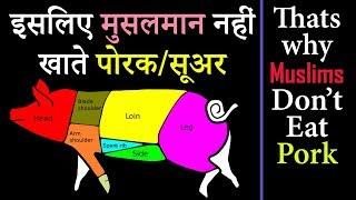 इसिलए मुसलमान नहीं खाते  पोरक सूअर (Isliye Muslims Nahi Khate Pork) Scientific Reasoning