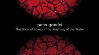 Peter Gabriel ~ Washing of the Water  (New Blood Version)