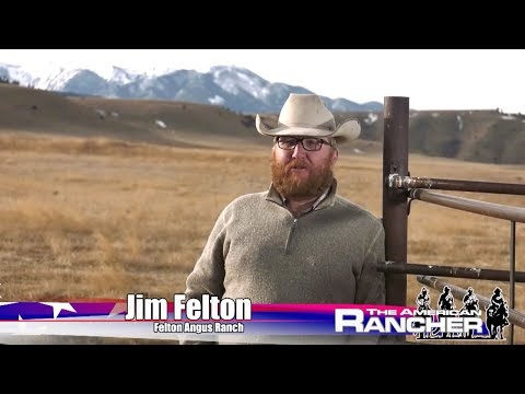 American Rancher | Felton Angus Ranch 2019