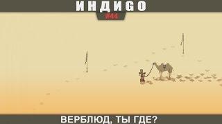 ИндиGO #44 Верблюд, ты где