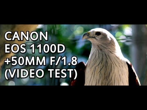 Canon EOS 1100D (Rebel T3) 50mm f/1.8 Lens. Video Test + Qui