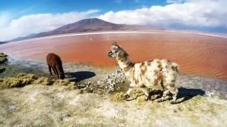 3 nanas en Bolivie - Septembre 2016