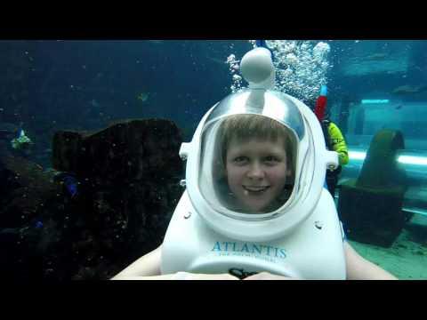 Shark Safari Experience Atlantis Dubai