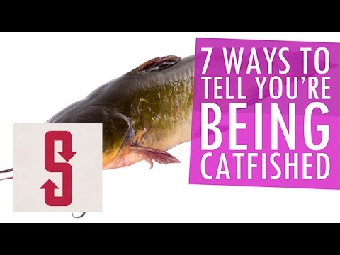 How to tell if you are being catfished