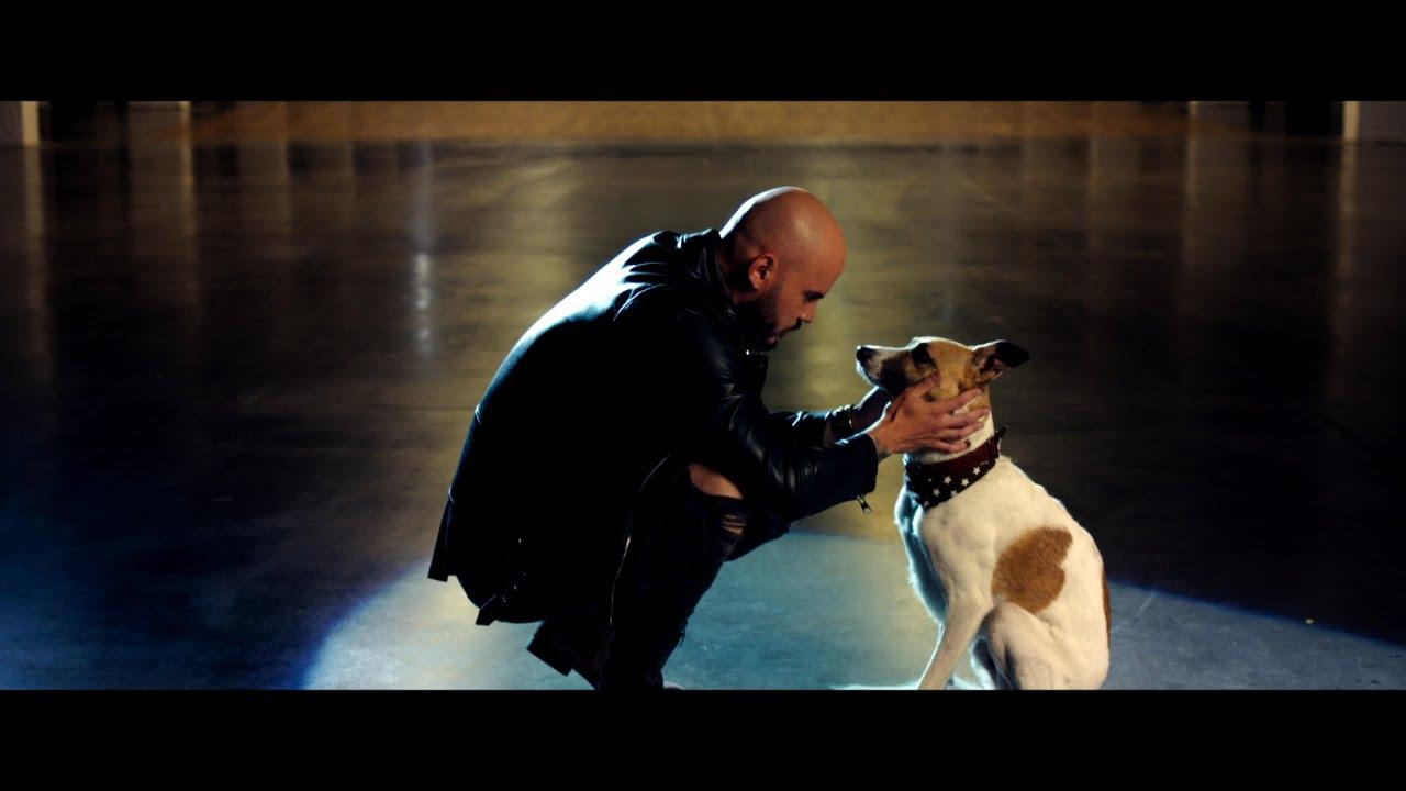 Desmod x Majself - KOMÉTA (pre Gumpa) Official Video