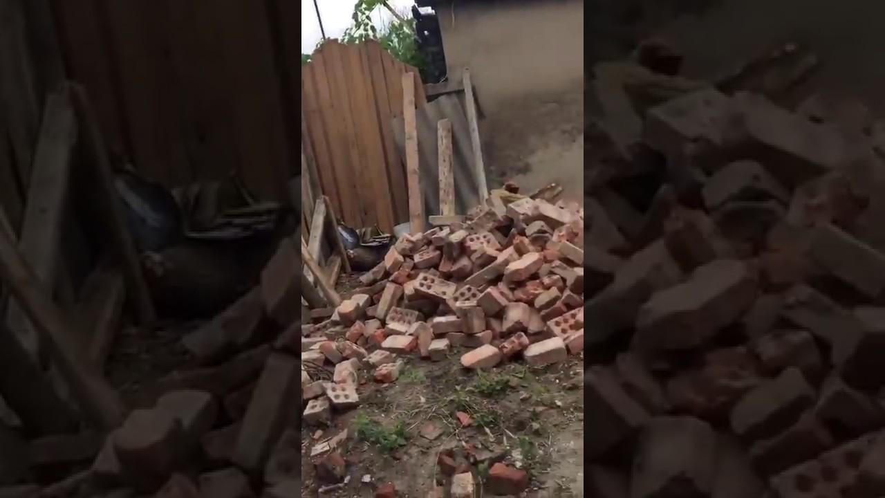 Маргаритки урожайный июль на даче снято 7 июля 2014 года - YouTube