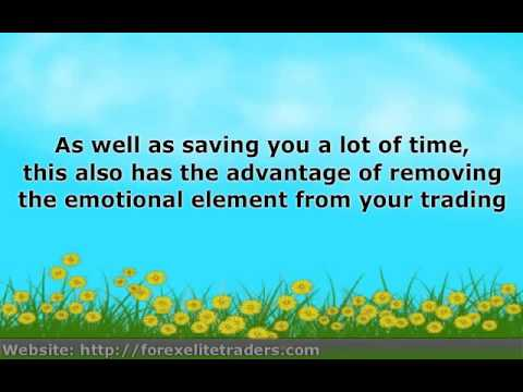 Forex wealth transfer review