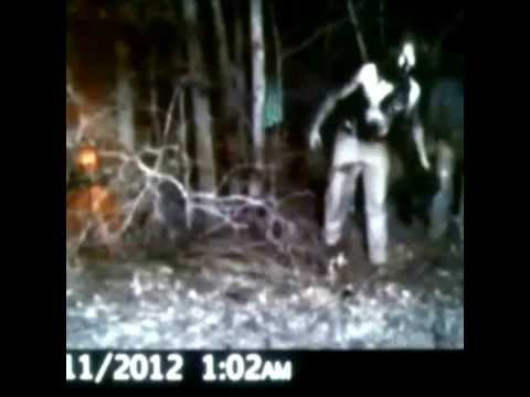 Real Creepy and unexplainable Trail cam photos - YouTube Scary Deer Cam Pictures