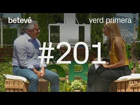 Verd Primera - #201 - betevé