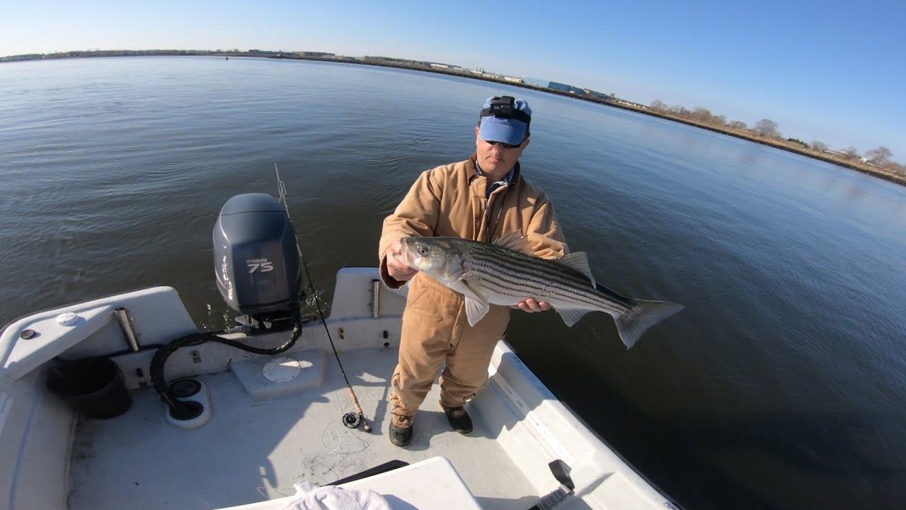 First Striped Bass of 2020! - Housatonic River