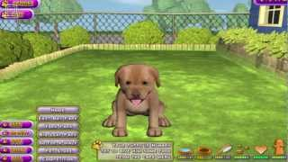 Puppy Luv : A New Breed Gameplay