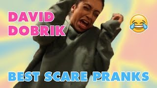DAVID DOBRIK SCARING PEOPLE [BEST REACTIONS]