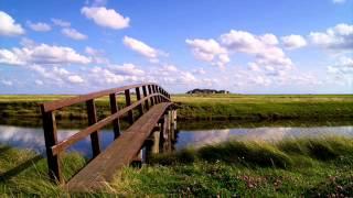 Johann Sebastian Bach - BWV 792 - Sinfonia No. 6 in E major - Randolph Hokanson