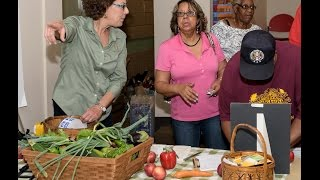 Gardening Class 101: Vegetable Gardening in Houston