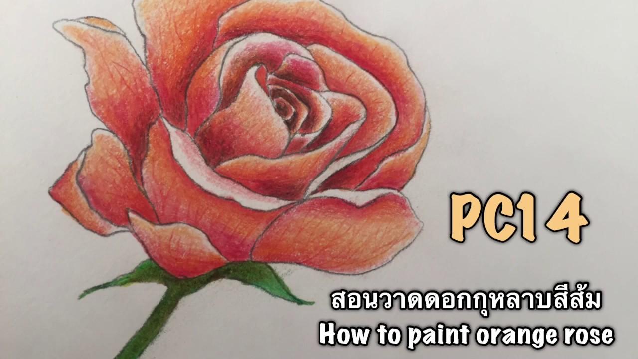 สอนวาดดอกก หลาบส ส ม How To Paint Orange Rose By Nunny Pc14 Youtube