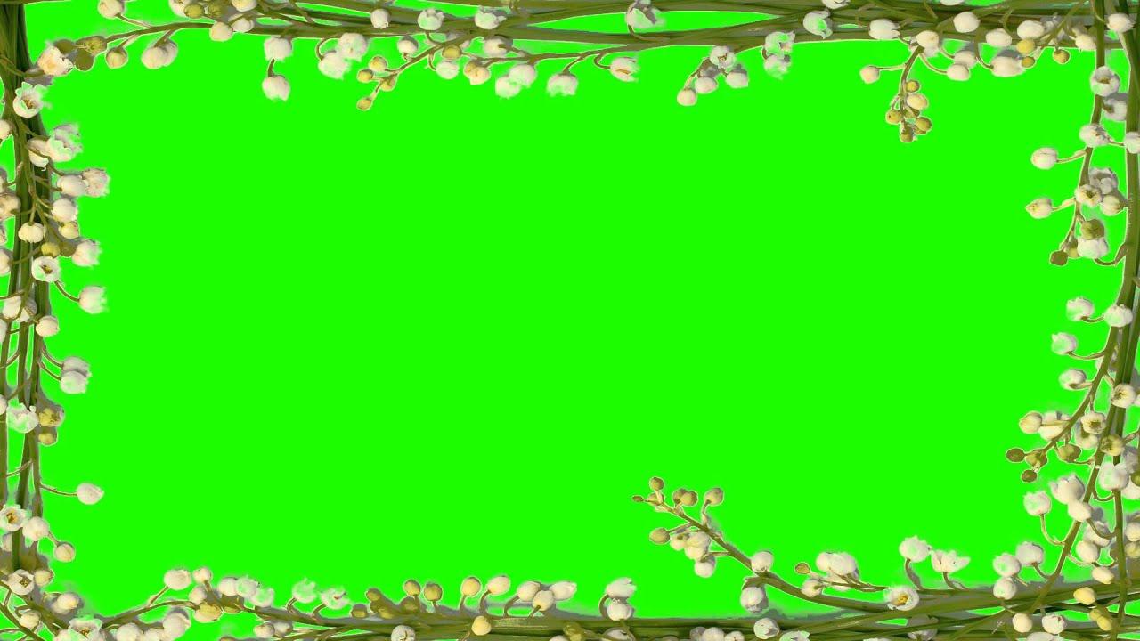 Beautiful photo border in green screen free stock footage youtube jeuxipadfo Images