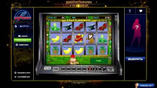 постер к видео Как выиграть в игровые автоматы Crazy Monkey в онлайн казино Вулкан