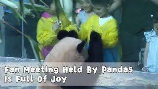 Fan Meeting Held By Pandas Is Full Of Joy | iPanda