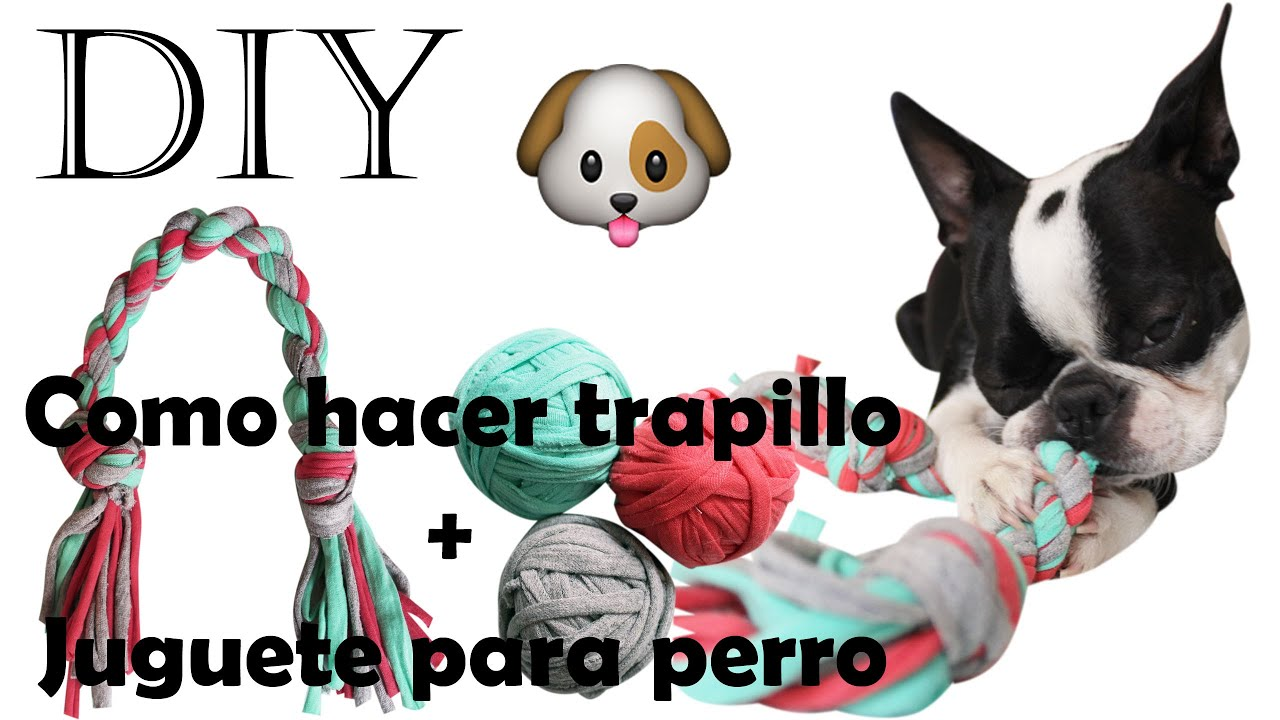 DIY ♥ Como hacer trapillo + juguete para perro fácil ♥ Reciclaje ...