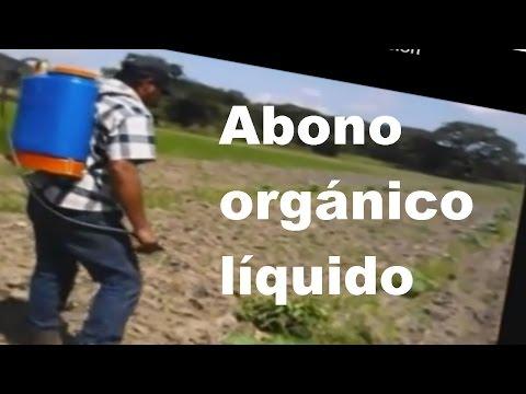preparación de ABONOS ORGANICOS líquidos (Purines) para su aplicación en campo