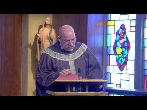 Set things right | Homily: Fr Paul Ring