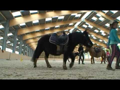 centre equestre 39