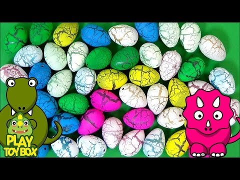 Learning Color Number Dinosaur Dino Eggs for kids preschooler with Surprise Eggs Toys [KOR]