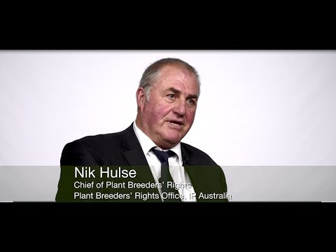 Nik Hulse, Chief of Plant Breeders' Rights, IP Australia (English)