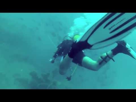 Scuba Diving in Pondicherry, India