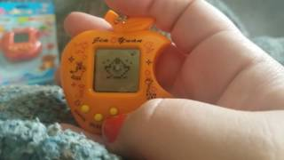 Virtual pet Machine pet review