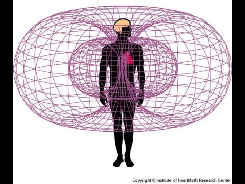 Image result for body' Magnetic Field