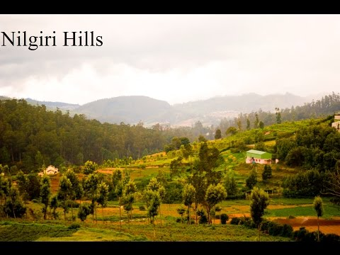Nilgiri Mountains Sight Seeing SOUTH INDIA 2015