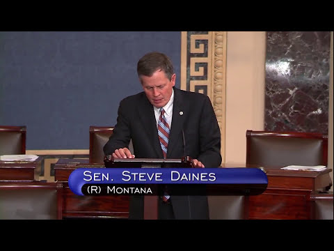Daines: We need to manage our forests, before they manage us