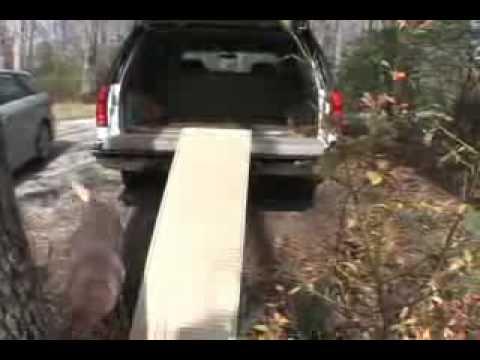petstep-folding-pet-ramp---dog-training