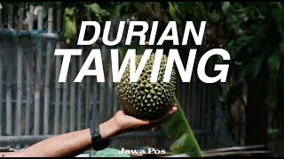 Jawa Pos Belah Durian Episode 18: Durian Tawing thumbnail