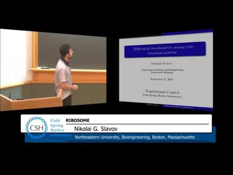 Ribosome Session @ CSHL Translational Control Meeting 2016