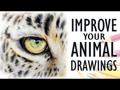 tips-for-drawing-realistic-animals-|-get-better-with-colored-pencil
