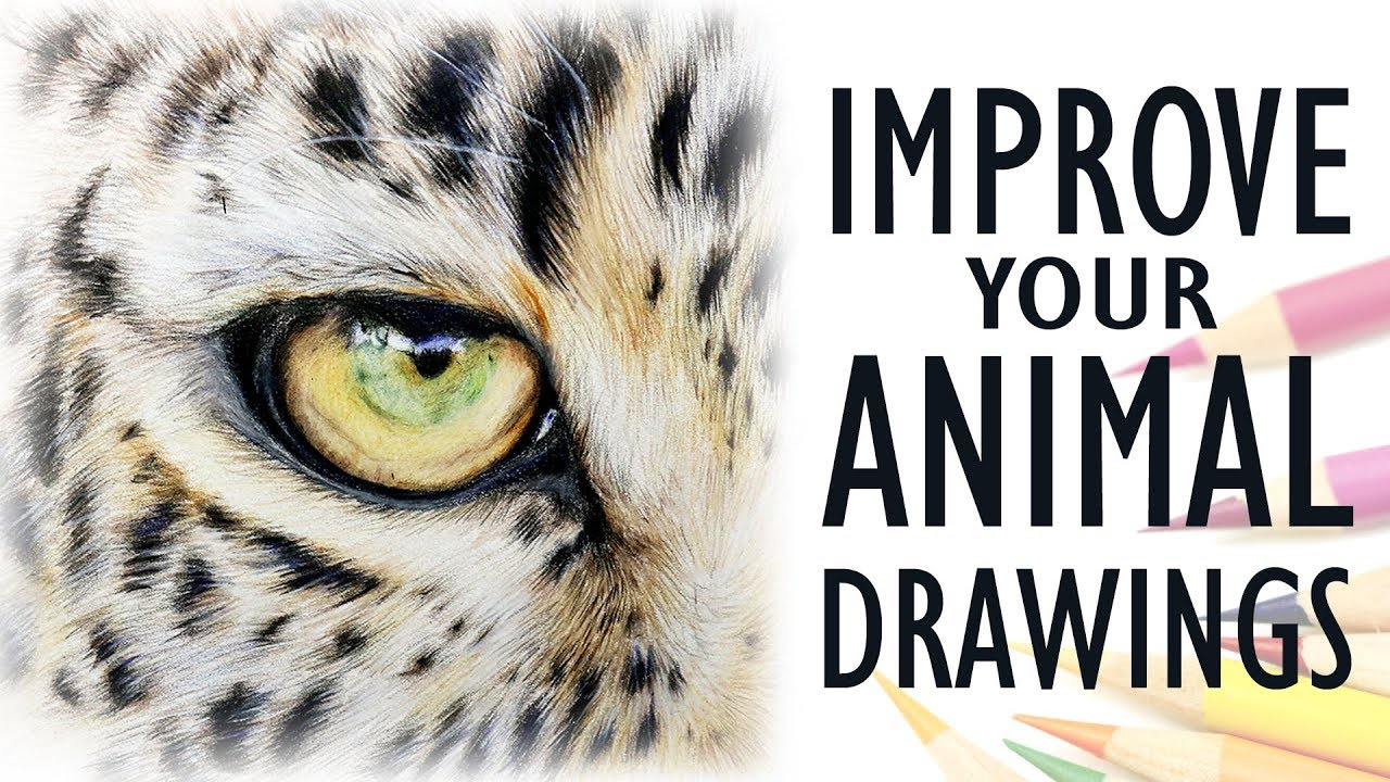 Tips for drawing realistic animals get better with colored pencil