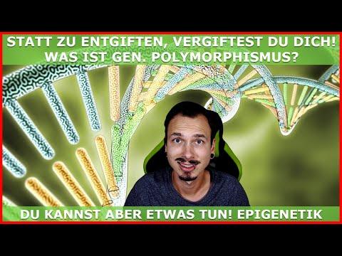 Statt zu ENTGIFTEN, VERGIFTEST du DICH - Genetischer Polymorphismus der Enzyme!