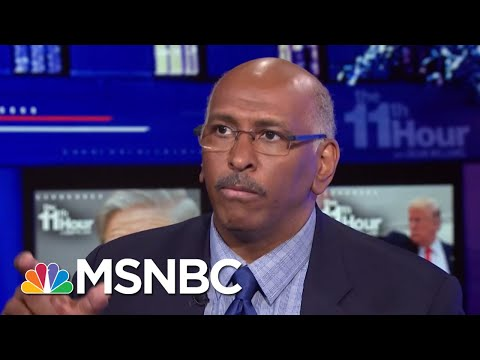 Michael Steele: President Trump May Be Setting The Stage To Pardon Himself | The 11th Hour | MSNBC