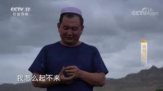 《攻坚日记》 20200626 拉面县脱贫记(4) CCTV农业