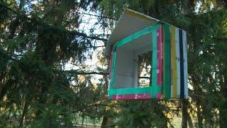 как из картона сделать кормушку для птиц