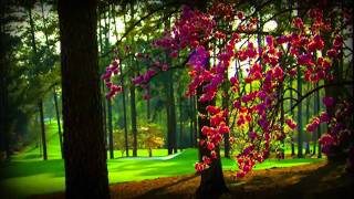 Tiger Woods PGA TOUR 12: The Masters Augusta Trailer