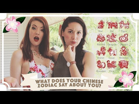 What Does Your Chinese Zodiac Say About You? // Malaysia Travel Vlog