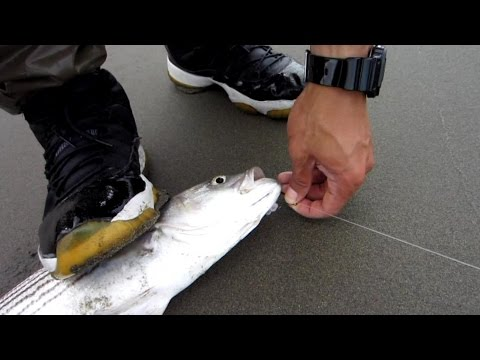 Striped Bass Fishing Tips, New Rig, Exploring Tide Pools