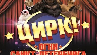 видео График гастролей цирка аншалг в России
