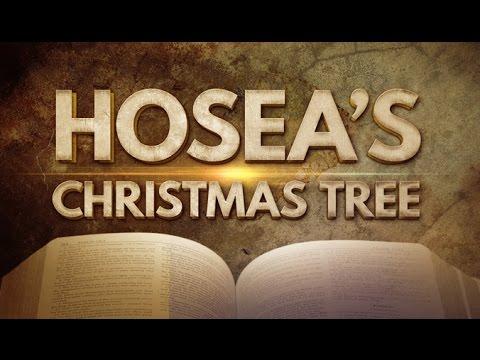 Hosea's Christmas Tree - 119 Ministries