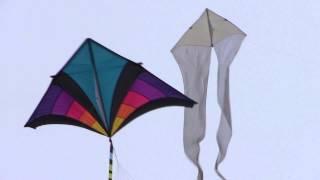 Kite Festival WSIKF 2014 Ascension 1 Thumbnail