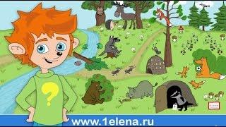 """Детский мультфильм  с Чевостиком """"Дикие животные"""" (Серия 2)"""